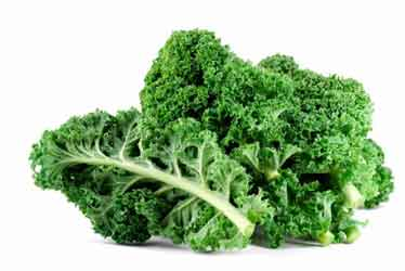 Kale is excellent food for the brain, liver, and bones.